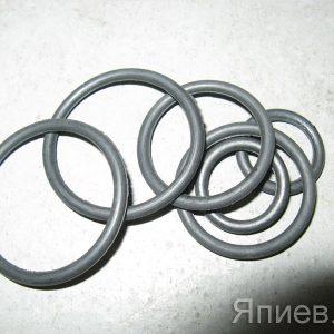 Набор фланцевых колец НШ-10, 32 (А203) (У) ак
