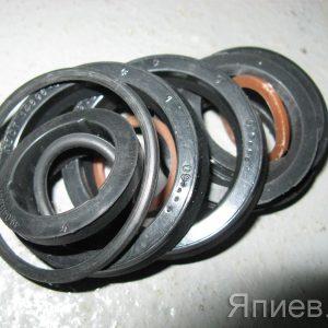 Р/к гц поворота колес МТЗ ЦС-50 (12 ед.) (Г437) (ГБЦ)