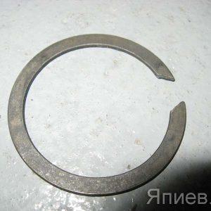 Кольцо стопорное вала сцепления МТЗ 2В55 пв