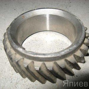 Шестерня коленвала МТЗ-1221 (z=27) 260-1005030 т