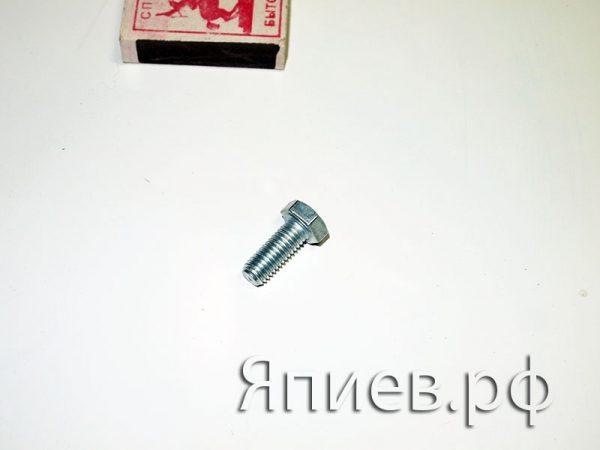 Болт М8*20 Шумахер (крепление шкива к приводу) (10104.01)