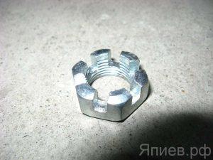 Гайка раздаточной коробки МТЗ-82  70-3003032